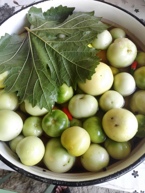 zelenye-pomidory (6)