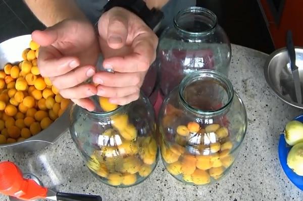 abrikosovyj-kompot-bez-sterilizacii (2)
