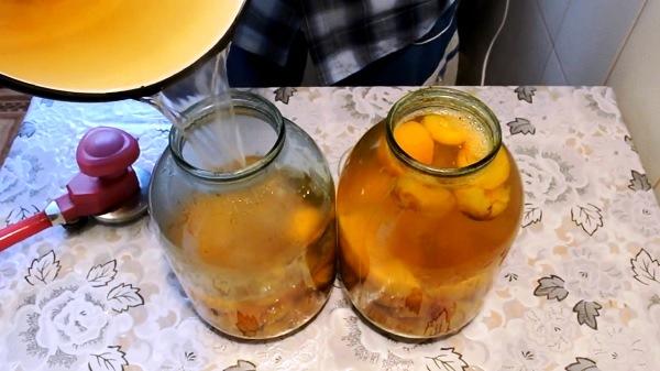 kompot-s-limonnoj-kislotoj (6)