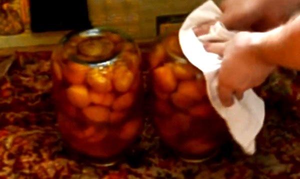 kompot-s-limonnoj-kislotoj (7)