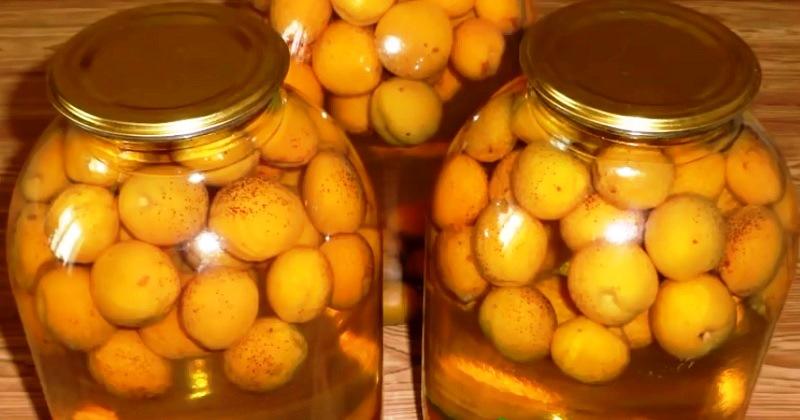kompot-s-limonnoj-kislotoj